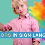 9 colors in sign language